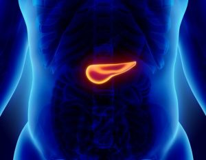 Elderly Care Havertown PA - Frequently Asked Questions About Pancreatic Cancer
